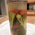 Vegetais fermentados